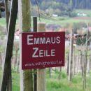 Weinbau Spari_17